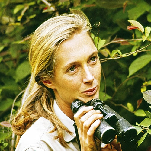 Photo Jane Goodall-Getty Images,Teen Vogue - Protéger les forêts tropicales