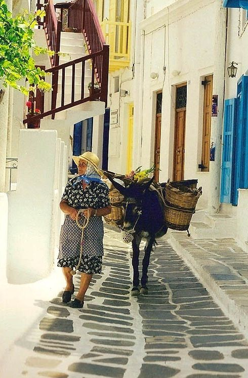 old Lady and Donkey via Pinterest DR