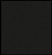 Logo Numéro Une Noir