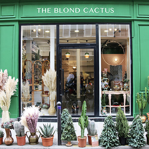 the blond cactus